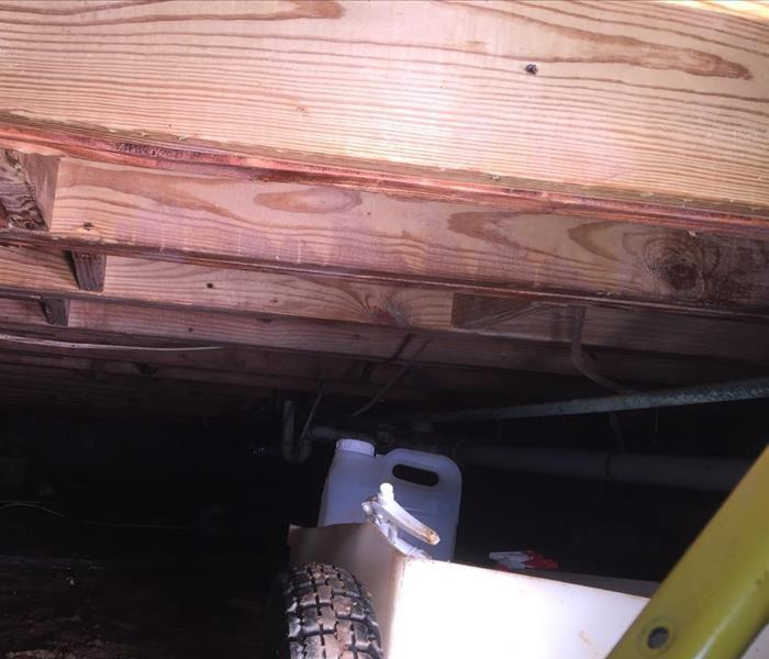 Moldy Crawlspace After