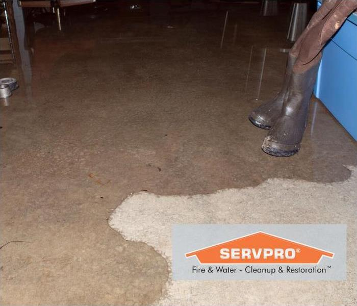 Let SERVPRO Help You with Basement Moisture